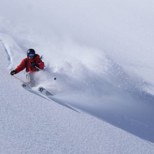 Skier turning on powder